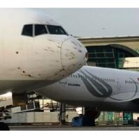 Чергове зіткнення з птахами - Боїнг 777 благополучно зміг приземлитися