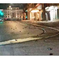 Нічні феєрверки і петарди вбили сотні птахів в Римі в новорічну ніч