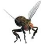 Відлякувачі комах, комарів