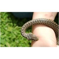 Особливості роботи відлякувача змій на земельній ділянці